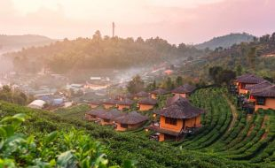 thailand toptrade